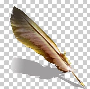 Quill Fountain Pen Feather PNG