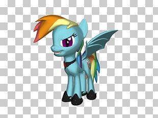 My Little Pony Rainbow Dash Horse PNG