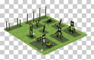 Outdoor Gym Fitness Centre Calisthenics Bodybuilding Physical Fitness PNG