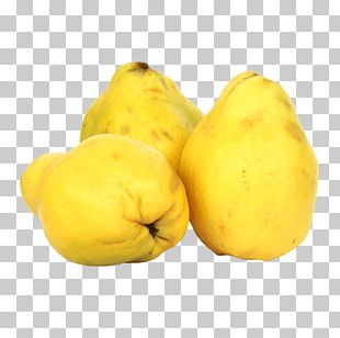 Patty Pan Winter Squash Cucurbita Quince PNG