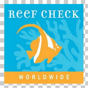 Reef Check Coral Reef International Conservation Great Barrier Reef PNG