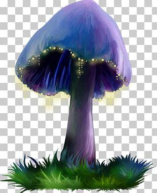 Purple Mushroom PNG