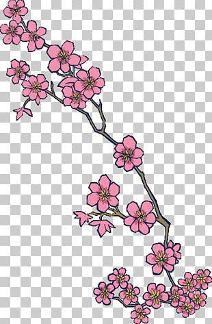 Cherry Blossom Tattoo Flash Irezumi PNG