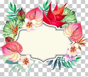 Frame Botany Flower Arranging PNG