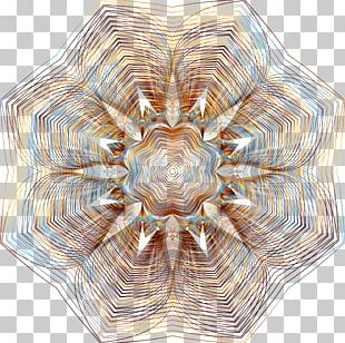Floral Design Motif Line Art Pattern PNG