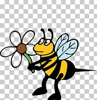 Bee Sting European Hornet Honey Bee PNG