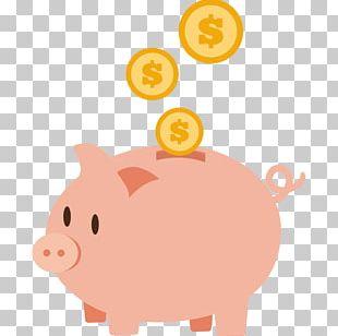 Piggy Bank Coin Money Saving PNG