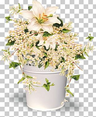 Arranging Cut Flowers PNG