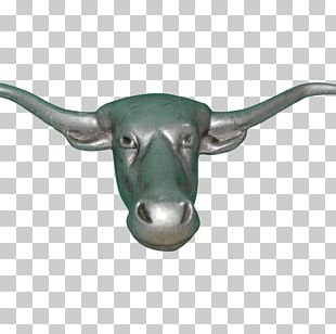 Cattle Goat Horn Animal Mammal PNG