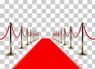 Academy Awards Pre-show Red Carpet PNG