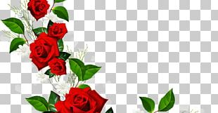 Rose Red Flower PNG