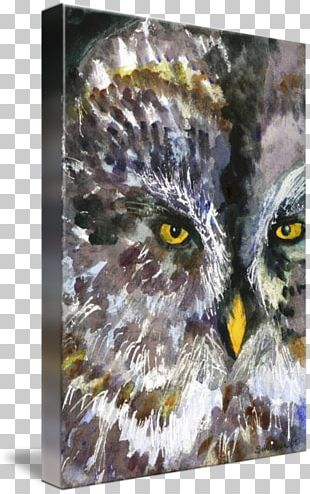 Owl Watercolor Painting Art Drawing PNG