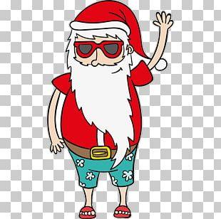 Cat Santa Claus Ded Moroz Sticker Appliqué PNG
