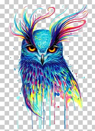 Owl Canvas Print Printing Painting PNG
