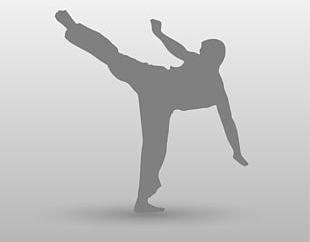 Wedding Invitation Karate Martial Arts Taekwondo Kick PNG