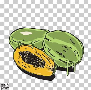 Winter Squash Product Design Melon Fruit PNG