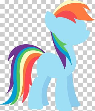 Rainbow Dash Horse Photography PNG