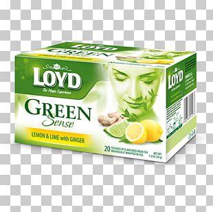 Green Tea White Tea Tea Bag Rooibos PNG