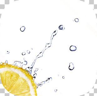 Water Stock Photography Lemon Drop PNG