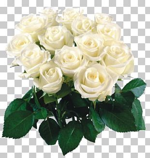 Desktop Flower Bouquet Rose PNG