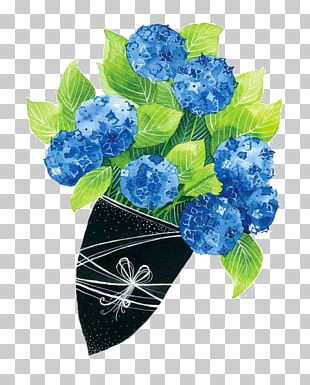 French Hydrangea Flower Illustration PNG