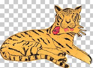 Whiskers Tiger Lion Art Painting PNG