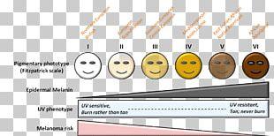Fitzpatrick Scale Human Skin Color Von Luschan's Chromatic Scale Fotoepilazione PNG