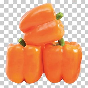 Bell Pepper Chili Pepper Vegetable Dolma Stuffing PNG