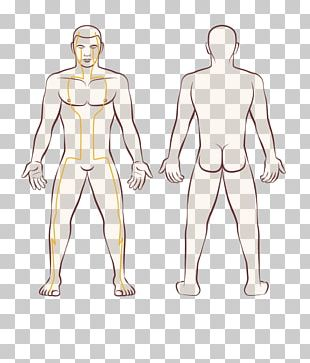 Human Body Woman Male PNG