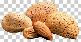 Almond Nut PNG