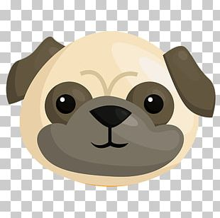 Pug Puppy PNG