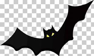 Bat Free Content PNG