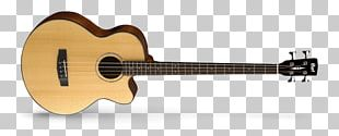 Acoustic Bass Guitar Cort Guitars Acoustic-electric Guitar Acoustic Guitar PNG