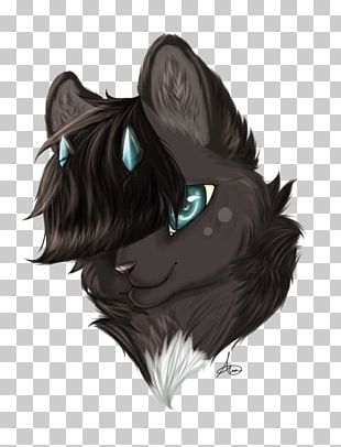 Whiskers Cat Dog Snout PNG