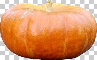 Cucurbita Pumpkin Gourd Vegetable Winter Squash PNG