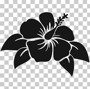 Decal Sticker Shoeblackplant Flower Hawaiian Hibiscus PNG