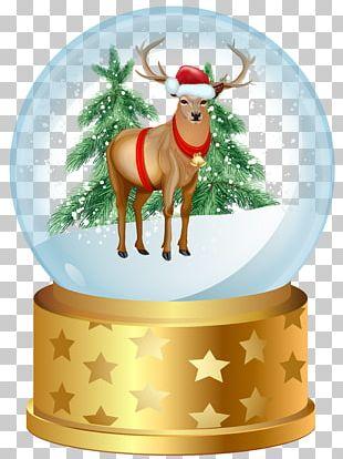 Christmas Snow Globe PNG