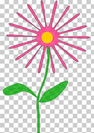 Pink Flowers Pink Flowers PNG