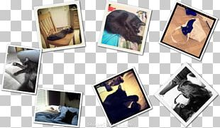 Frames Collage PNG
