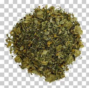 Tea Sencha Bancha Herb Holy Basil PNG