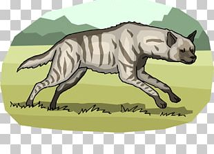 Striped Hyena Cat Spotted Hyena PNG
