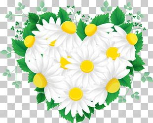 Cut Flowers Green PNG