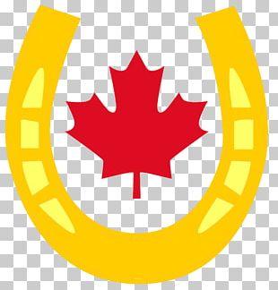 Flag Of Canada Maple Leaf National Flag PNG