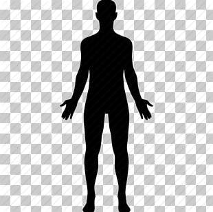 Human Body Computer Icons Anatomy Homo Sapiens PNG