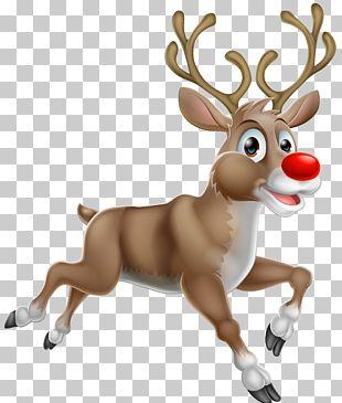 Rudolph Santa Claus's Reindeer PNG