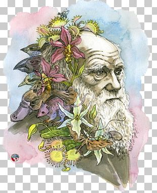 The Beak Of The Finch: A Story Of Evolution In Our Time The Voyage Of The Beagle The Theory Of Evolution Darwin Day PNG
