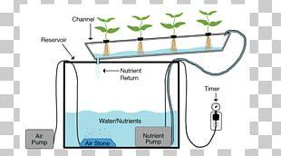 Nutrient Film Technique Hydroponics Deep Water Culture Aquaponics Agriculture PNG