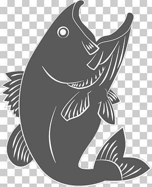 Marine Mammal White Carnivora Font PNG