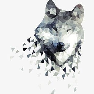 Gray Wolf Illustration PNG