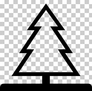 Shade Tree Pine Computer Icons PNG